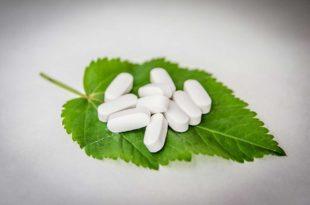 Was bewirken Leptin Tabletten im menschlichen Körper?